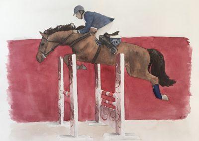 Cavalo e o seu cavaleiro em competição